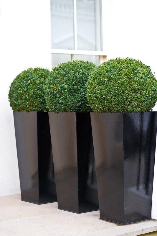 Bespoke Planters Metal Planters Custom Window Boxes And Flower
