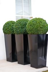 Box.ball.polystone.planters
