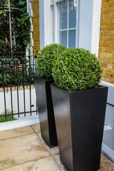 Box.in.contemporary.planters